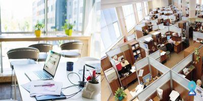Open Office Spaces vs. Cubicles